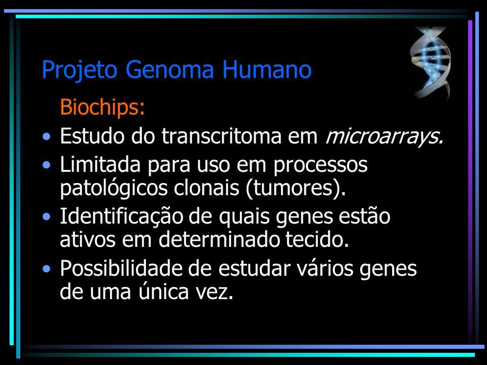 Projeto Genoma Humano Biochips: Estudo do transcritoma em microarrays.
