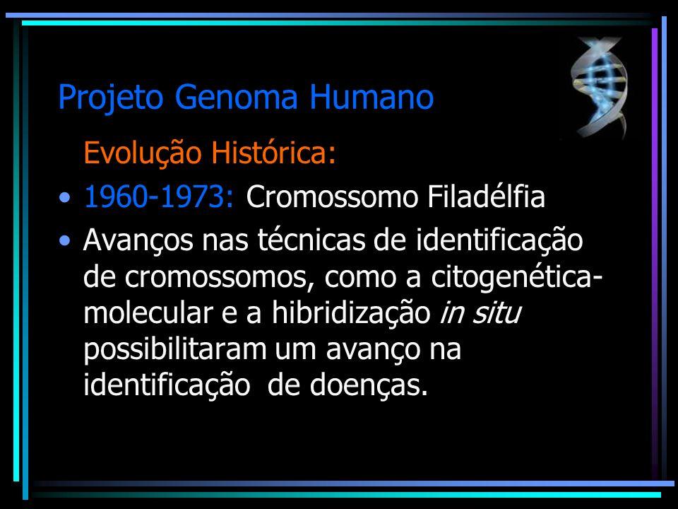 Projeto Genoma Humano Evolução Histórica:
