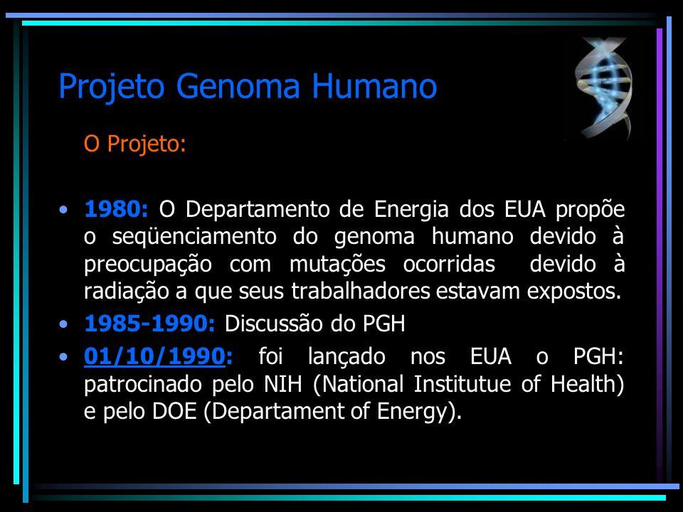 Projeto Genoma Humano O Projeto: