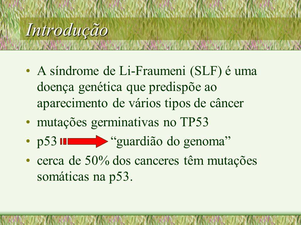 Introdução A síndrome de Li-Fraumeni (SLF) é uma doença genética que predispõe ao aparecimento de vários tipos de câncer.