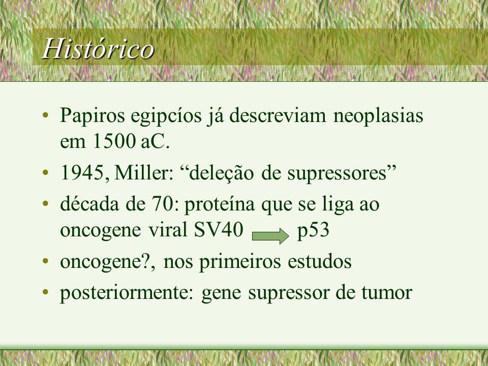 Histórico Papiros egipcíos já descreviam neoplasias em 1500 aC.