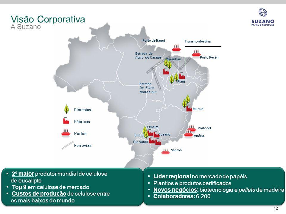 Visão Corporativa A Suzano 2º maior produtor mundial de celulose