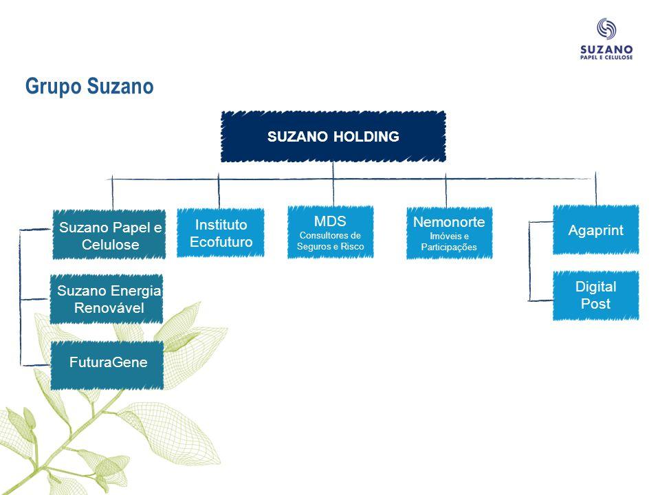 Grupo Suzano SUZANO HOLDING MDS Instituto Ecofuturo Nemonorte