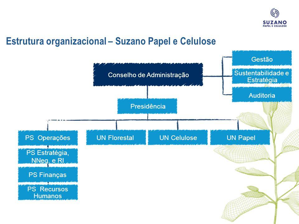 Estrutura organizacional – Suzano Papel e Celulose