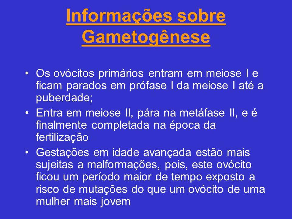 Informações sobre Gametogênese