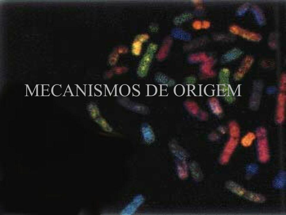 MECANISMOS DE ORIGEM