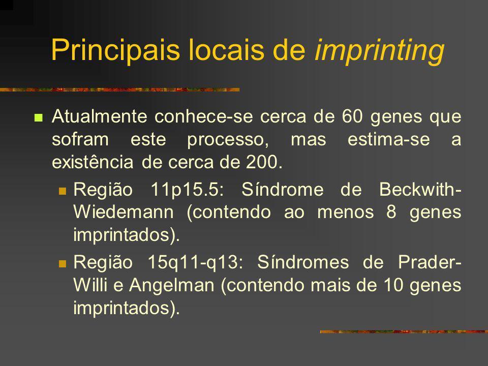 Principais locais de imprinting