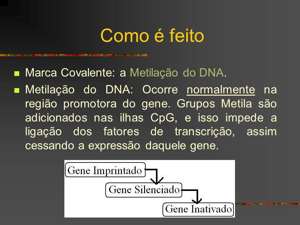 Como é feito Marca Covalente: a Metilação do DNA.