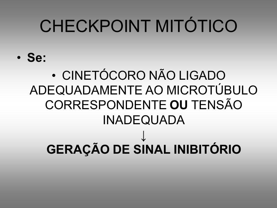 CHECKPOINT MITÓTICO Se: