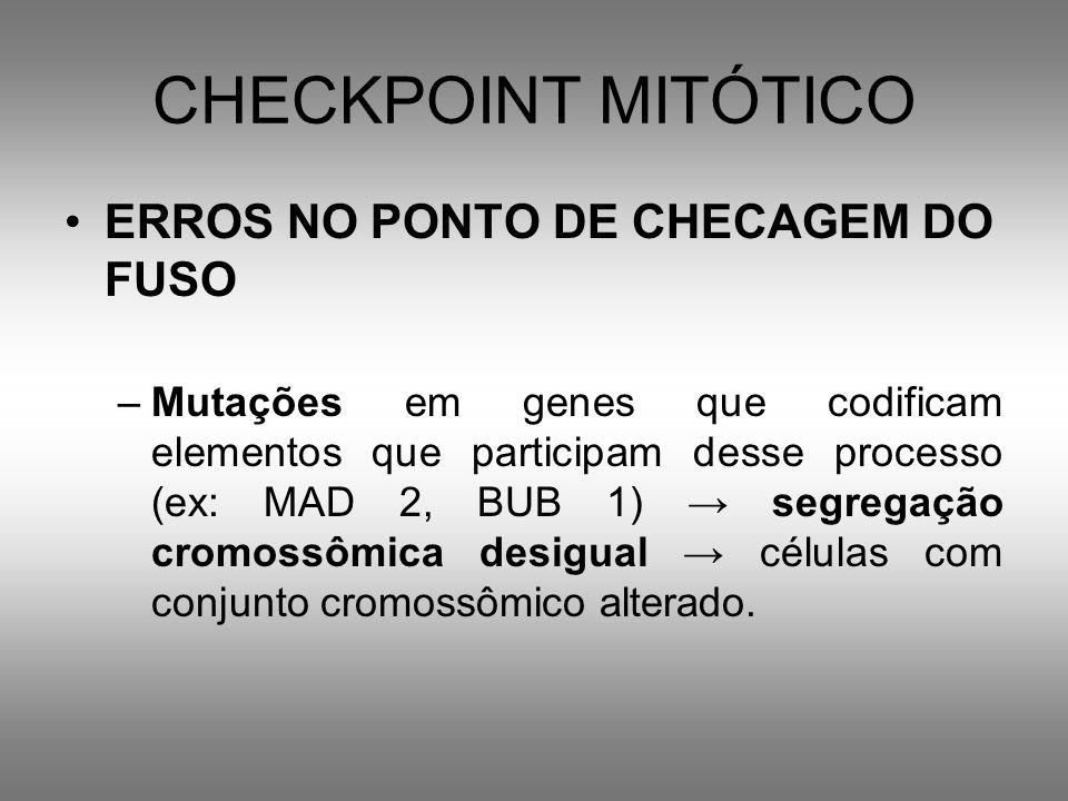 CHECKPOINT MITÓTICO ERROS NO PONTO DE CHECAGEM DO FUSO