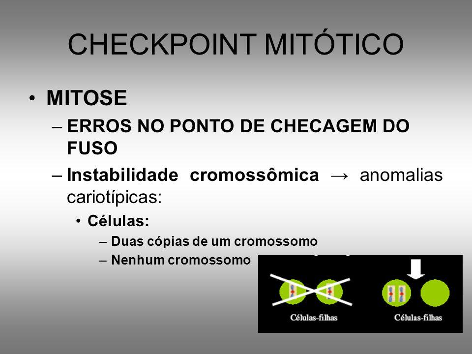 CHECKPOINT MITÓTICO MITOSE ERROS NO PONTO DE CHECAGEM DO FUSO