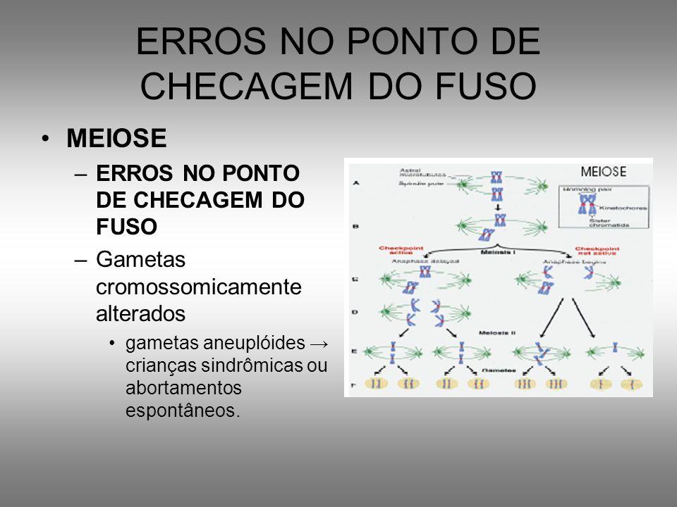 ERROS NO PONTO DE CHECAGEM DO FUSO