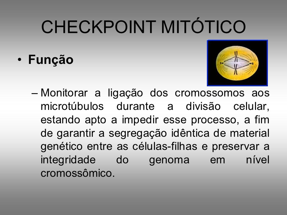 CHECKPOINT MITÓTICO Função
