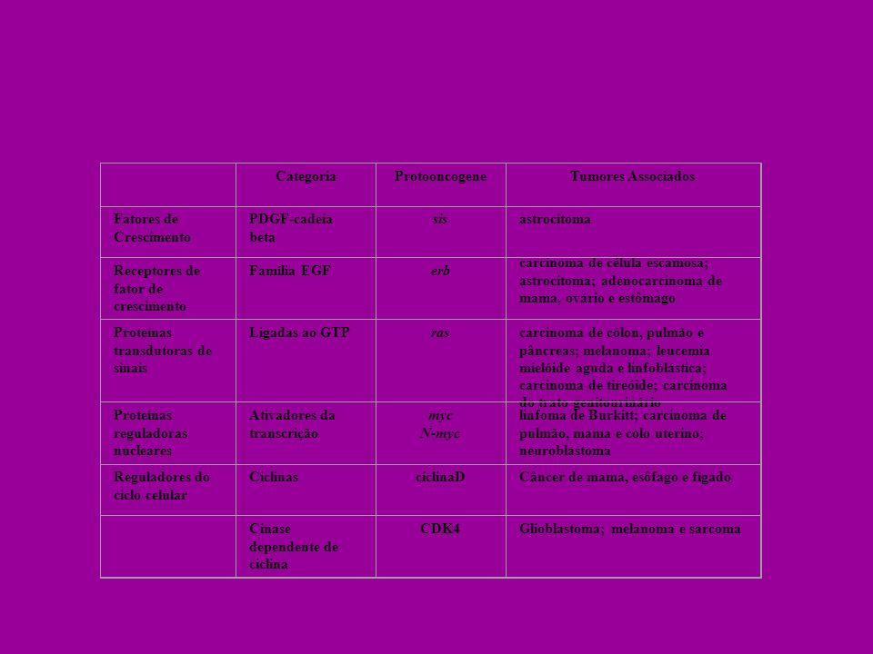Categoria. Protooncogene. Tumores Associados. Fatores de Crescimento. PDGF-cadeia beta. sis.