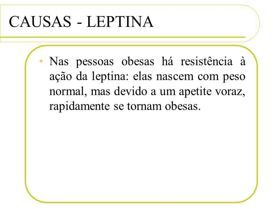 CAUSAS - LEPTINA