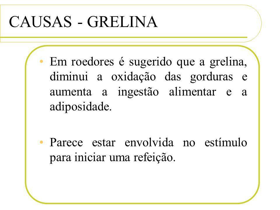 CAUSAS - GRELINA Em roedores é sugerido que a grelina, diminui a oxidação das gorduras e aumenta a ingestão alimentar e a adiposidade.