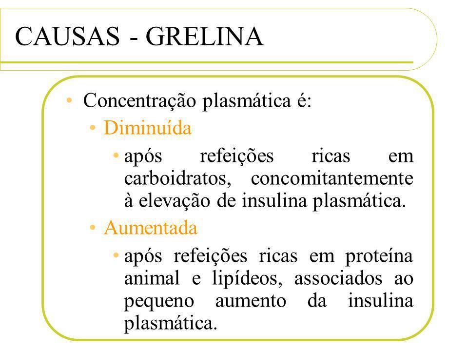 CAUSAS - GRELINA Concentração plasmática é: Diminuída