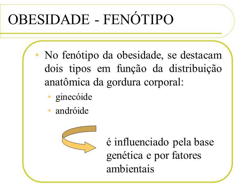 OBESIDADE - FENÓTIPO No fenótipo da obesidade, se destacam dois tipos em função da distribuição anatômica da gordura corporal: