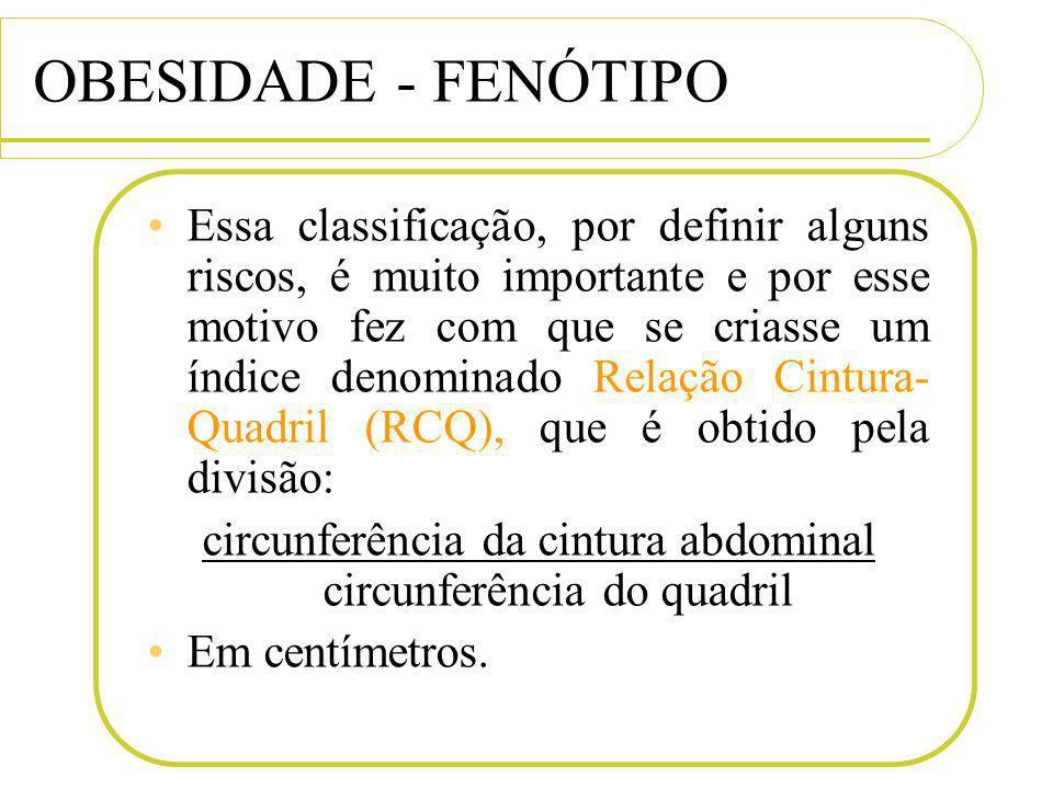 circunferência da cintura abdominal circunferência do quadril