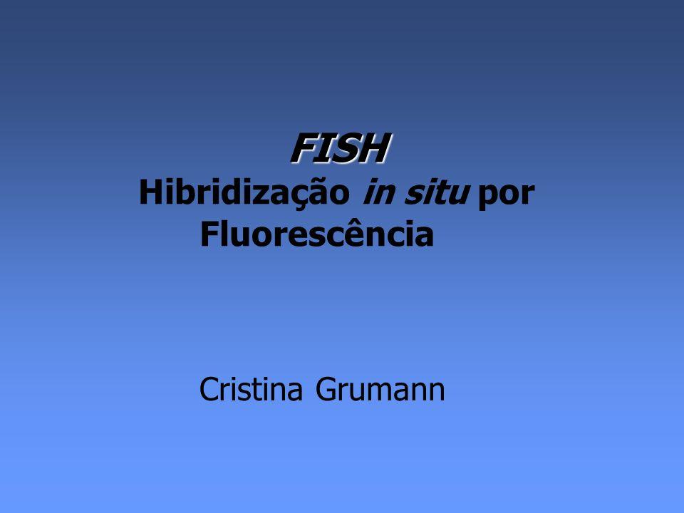 FISH Hibridização in situ por Fluorescência