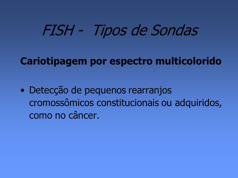 FISH - Tipos de Sondas Cariotipagem por espectro multicolorido