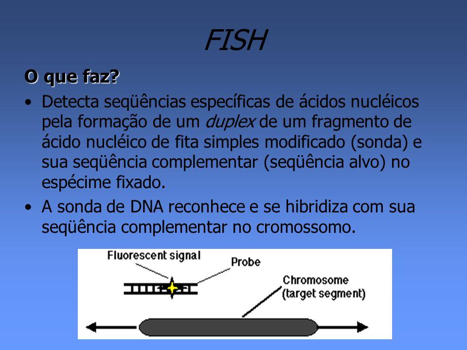FISH O que faz