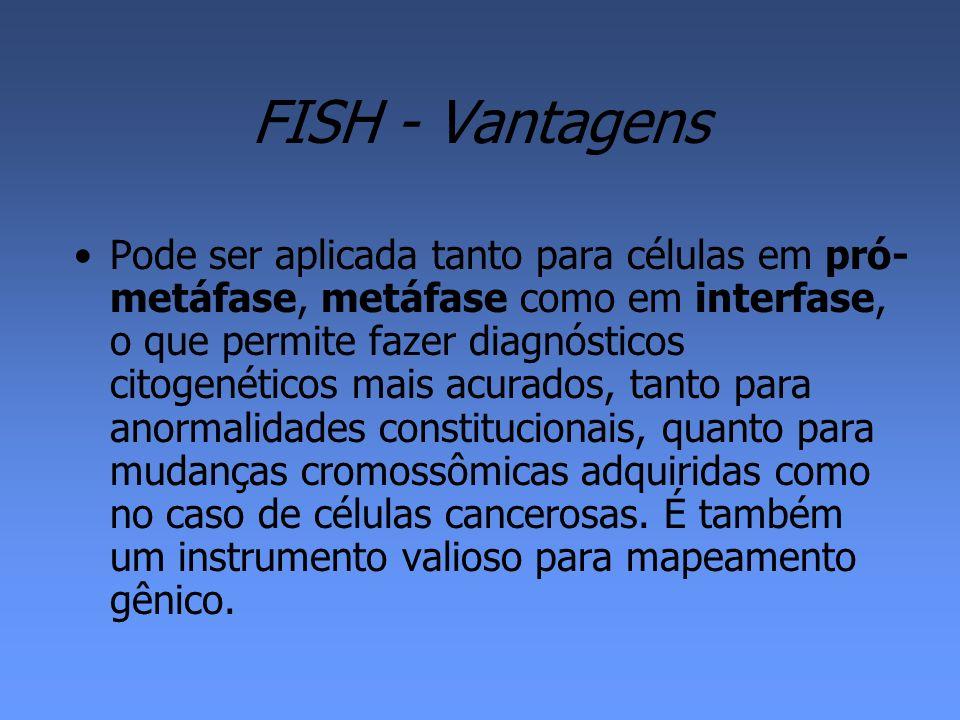 FISH - Vantagens