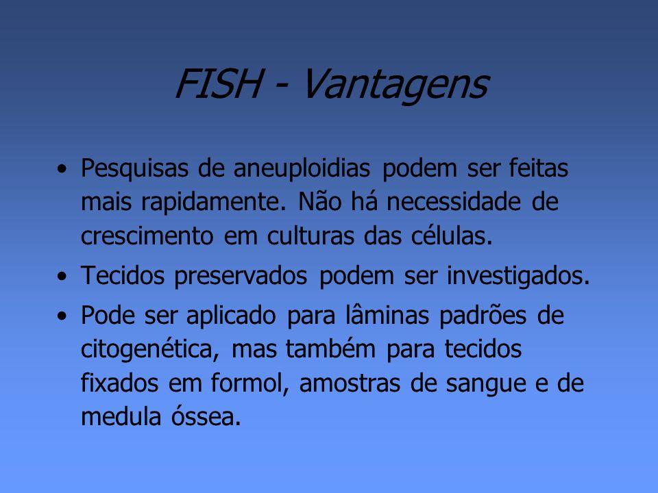 FISH - Vantagens Pesquisas de aneuploidias podem ser feitas mais rapidamente. Não há necessidade de crescimento em culturas das células.
