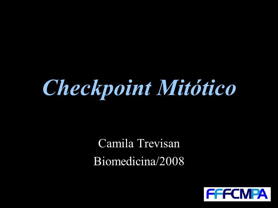 Camila Trevisan Biomedicina/2008