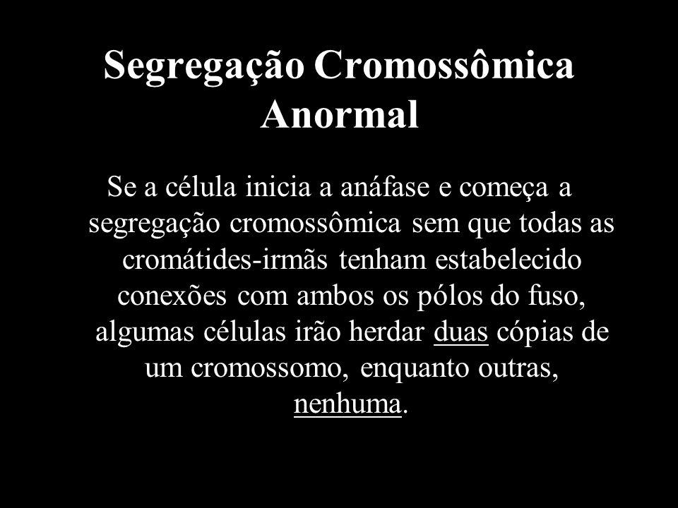 Segregação Cromossômica Anormal