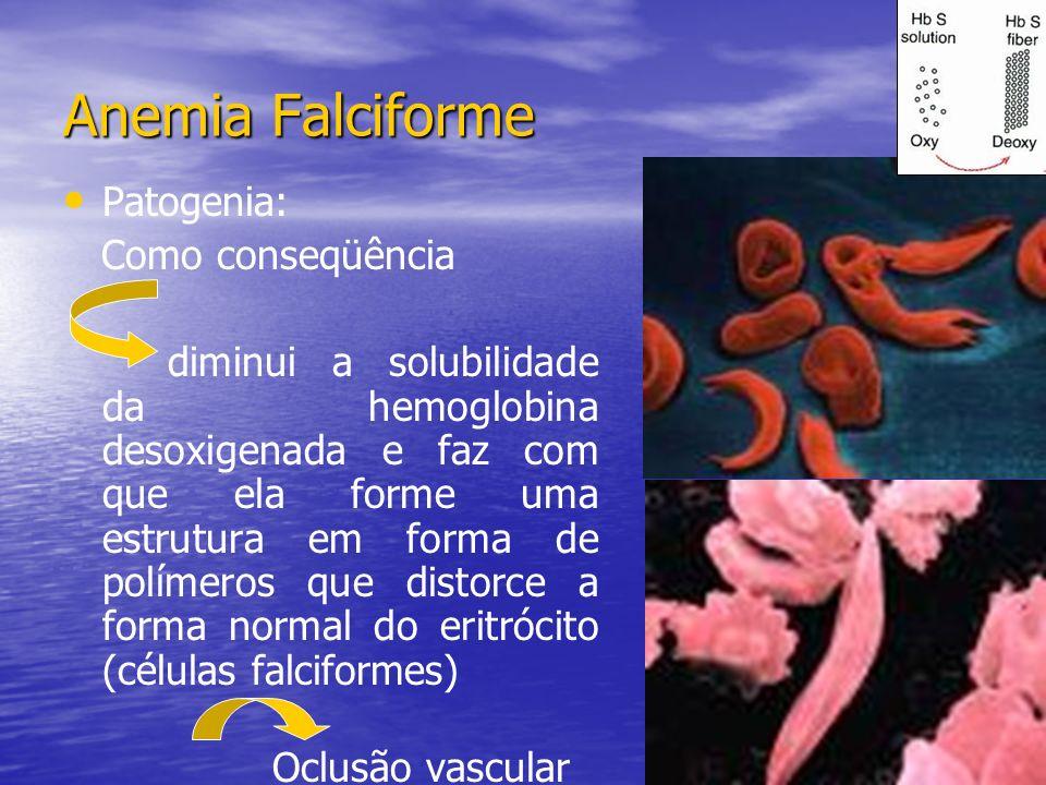 Anemia Falciforme Patogenia: Como conseqüência
