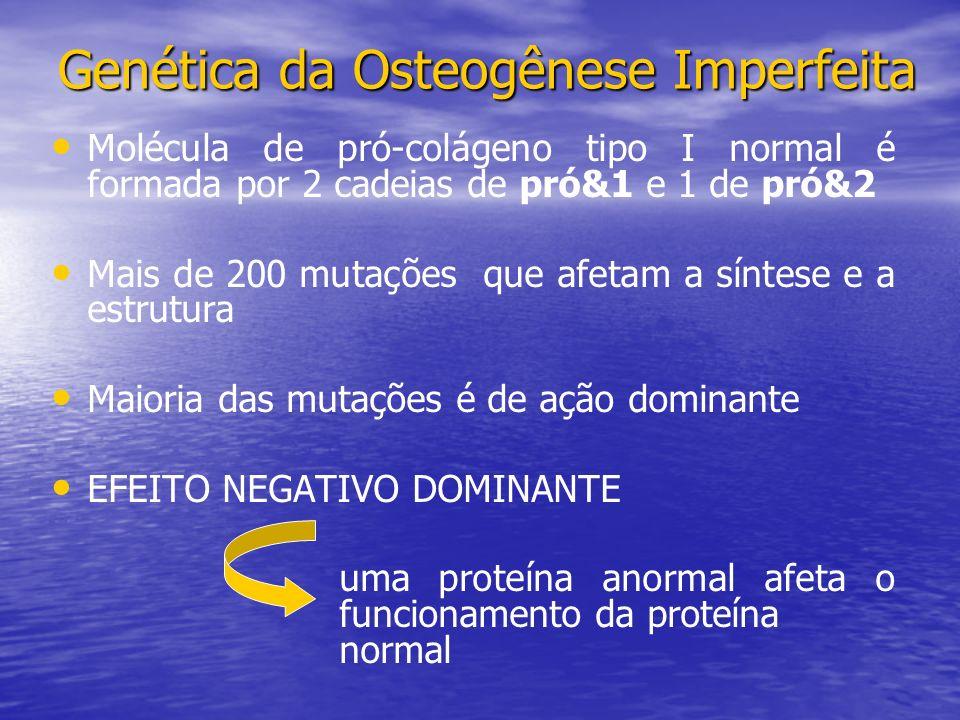 Genética da Osteogênese Imperfeita
