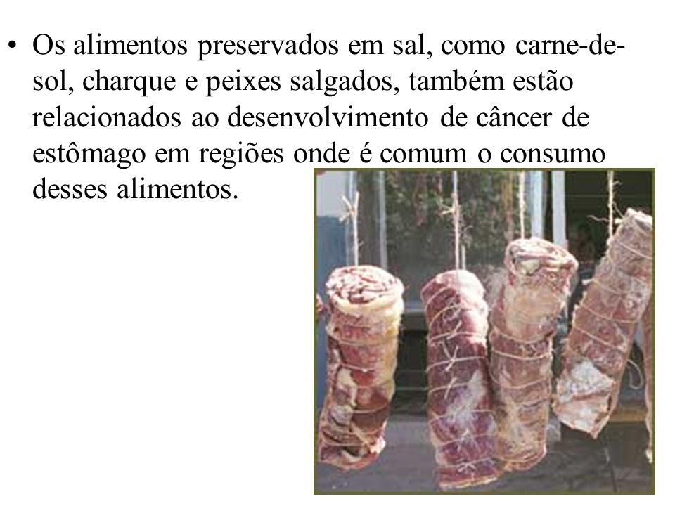 Os alimentos preservados em sal, como carne-de-sol, charque e peixes salgados, também estão relacionados ao desenvolvimento de câncer de estômago em regiões onde é comum o consumo desses alimentos.