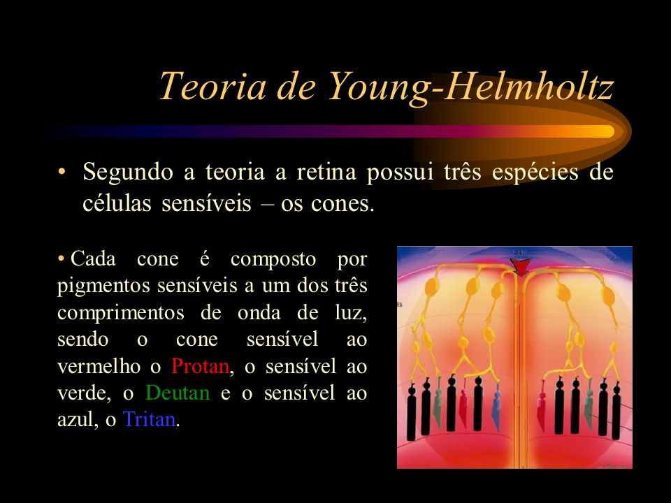 Teoria de Young-Helmholtz