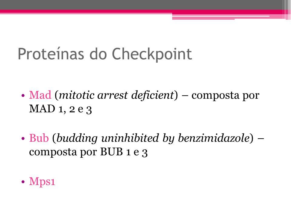 Proteínas do Checkpoint