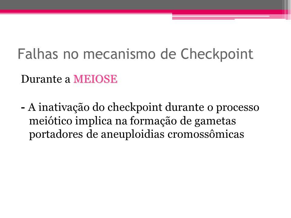 Falhas no mecanismo de Checkpoint