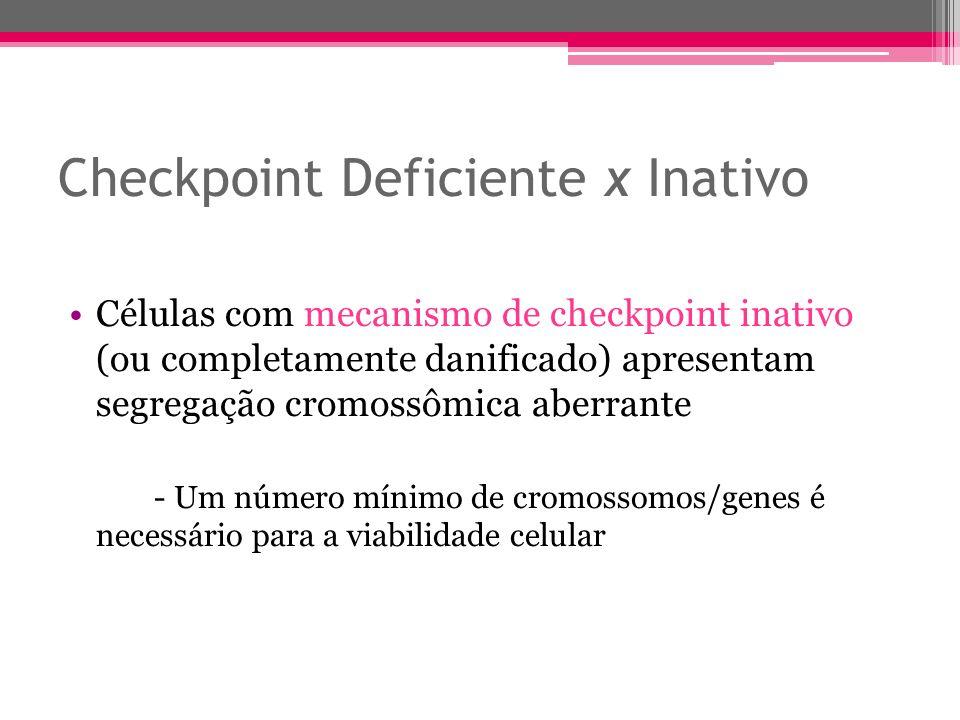 Checkpoint Deficiente x Inativo