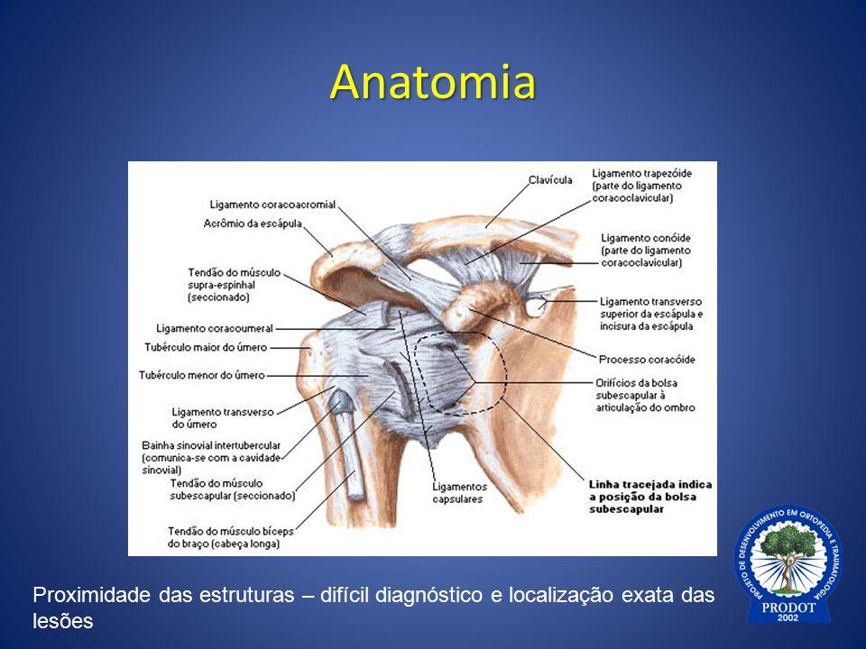 Anatomia Proximidade das estruturas – difícil diagnóstico e localização exata das lesões