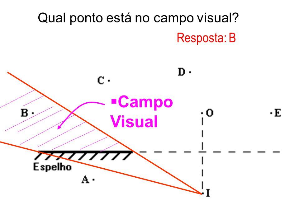 Qual ponto está no campo visual