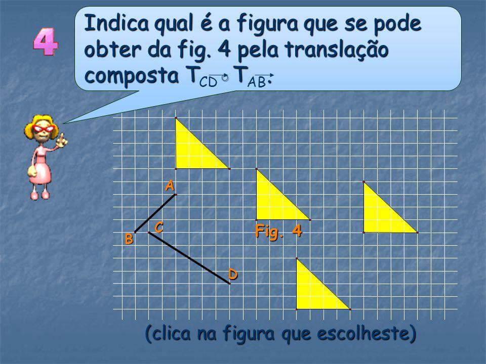 Indica qual é a figura que se pode obter da fig