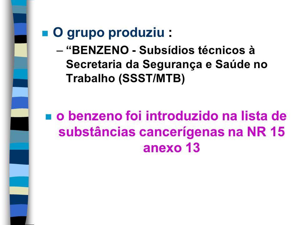 O grupo produziu : BENZENO - Subsídios técnicos à Secretaria da Segurança e Saúde no Trabalho (SSST/MTB)