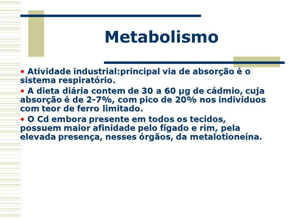 Metabolismo Atividade industrial:principal via de absorção é o sistema respiratório.