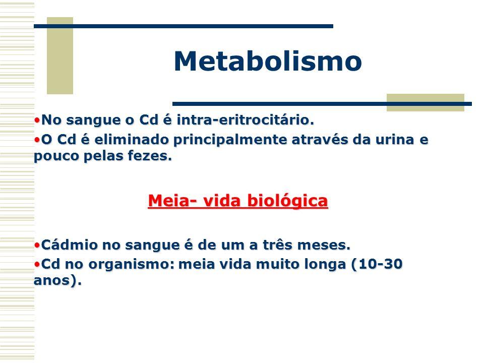 Metabolismo Meia- vida biológica No sangue o Cd é intra-eritrocitário.