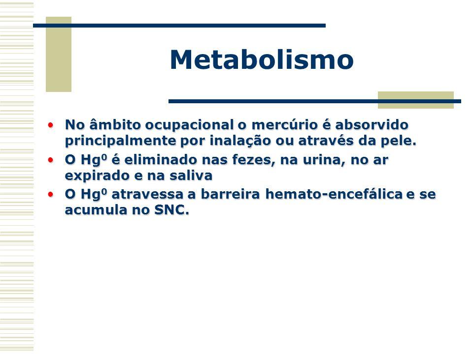 Metabolismo No âmbito ocupacional o mercúrio é absorvido principalmente por inalação ou através da pele.