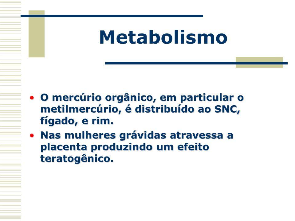 Metabolismo O mercúrio orgânico, em particular o metilmercúrio, é distribuído ao SNC, fígado, e rim.