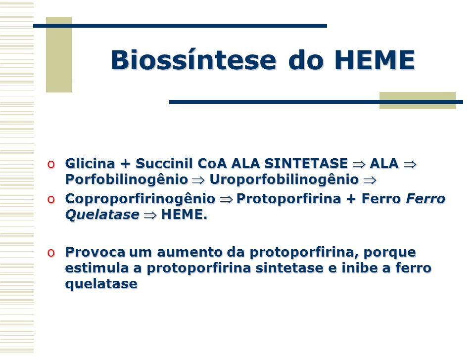 Biossíntese do HEME Glicina + Succinil CoA ALA SINTETASE  ALA  Porfobilinogênio  Uroporfobilinogênio 