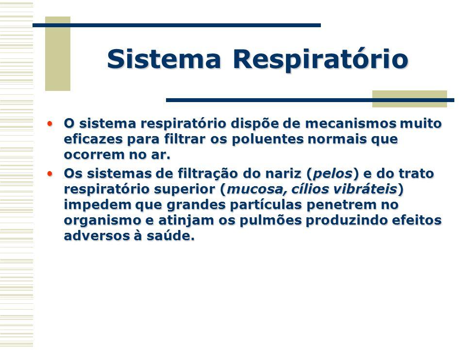 Sistema Respiratório O sistema respiratório dispõe de mecanismos muito eficazes para filtrar os poluentes normais que ocorrem no ar.