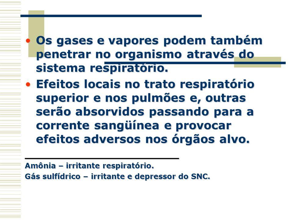 Os gases e vapores podem também penetrar no organismo através do sistema respiratório.