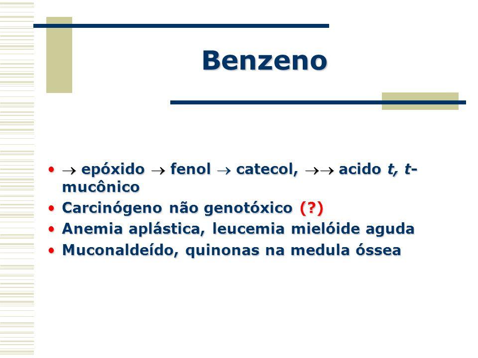 Benzeno  epóxido  fenol  catecol,  acido t, t-mucônico