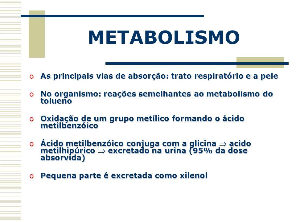 METABOLISMO As principais vias de absorção: trato respiratório e a pele. No organismo: reações semelhantes ao metabolismo do tolueno.